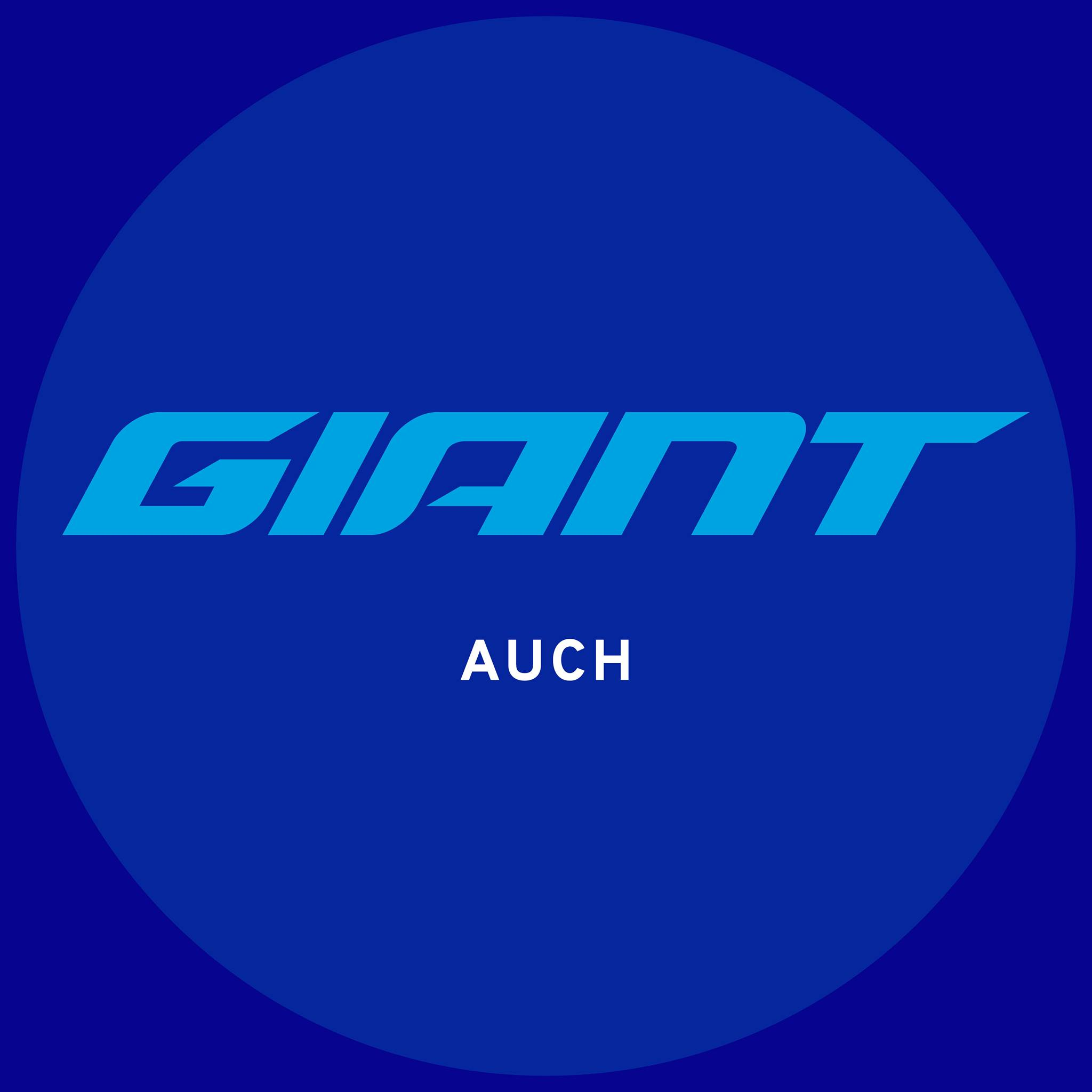 Giant Store Auch